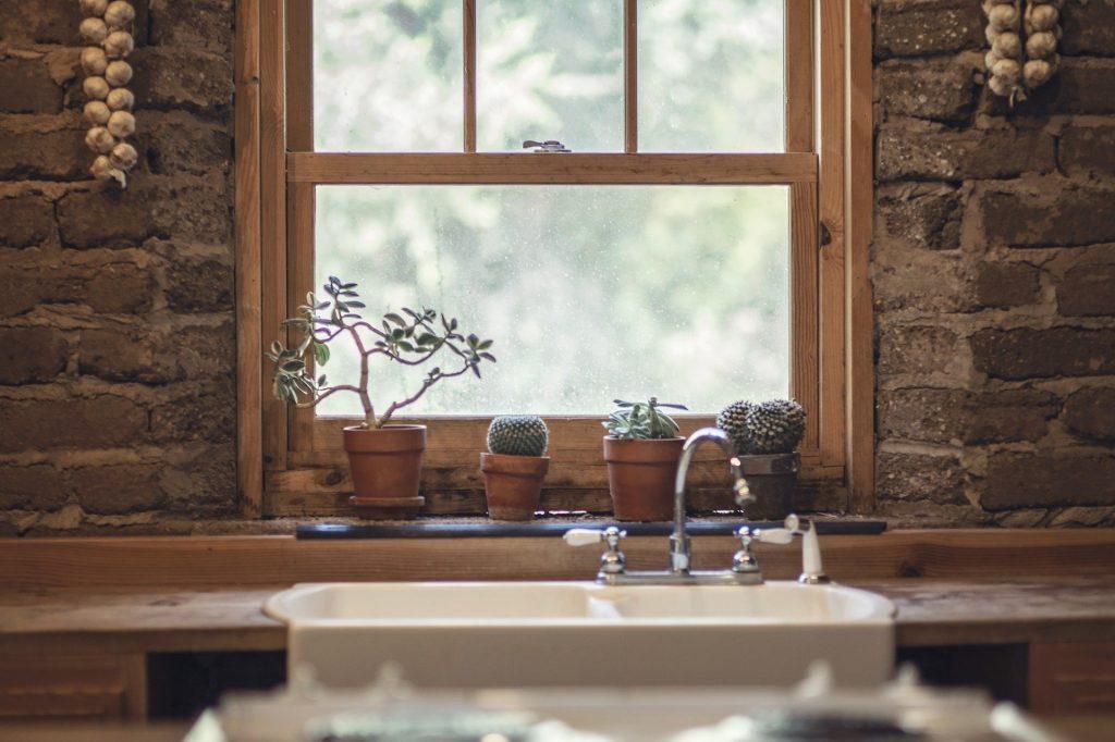 キッチン 観葉植物
