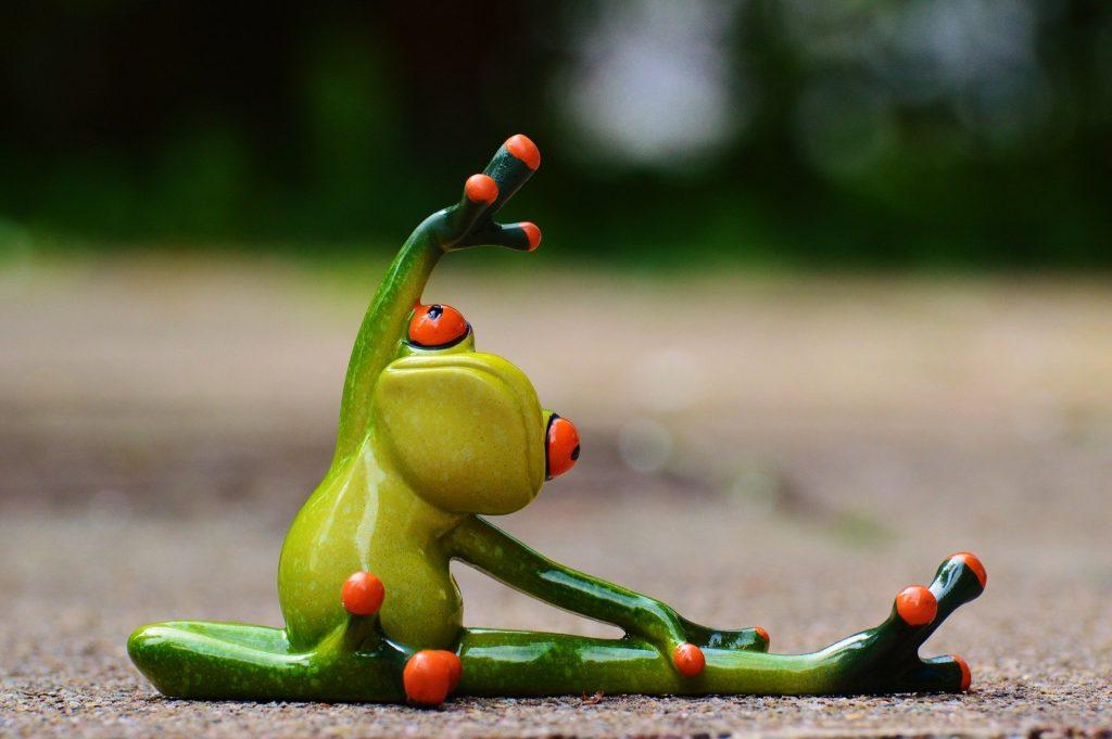 体操するカエル