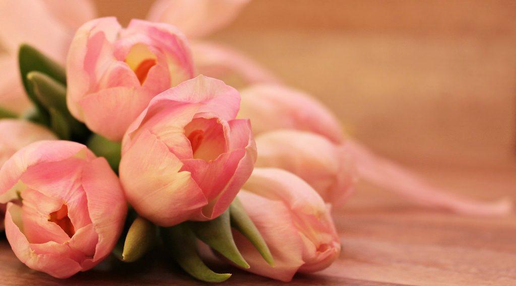 花束 チューリップ